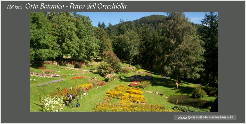 Orto Botranico in Garfagnana, riserva dell'Orecchiella